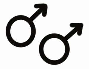 Gay Logo Straight Friendship Lemon Zest